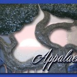 AppIronworks_banner copy